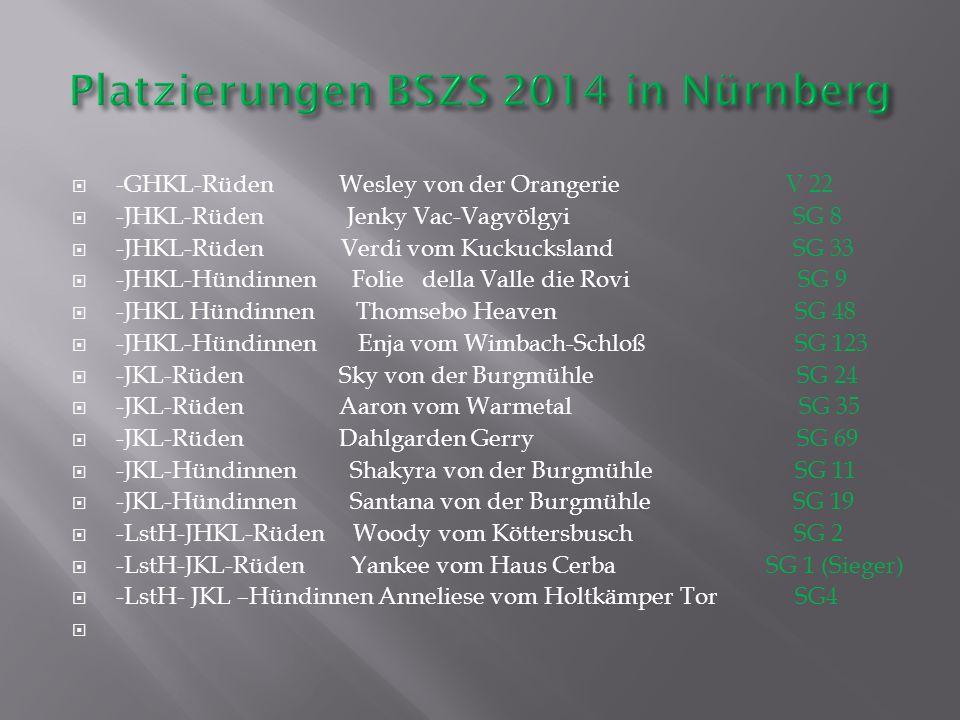 Platzierungen BSZS 2014 in Nürnberg