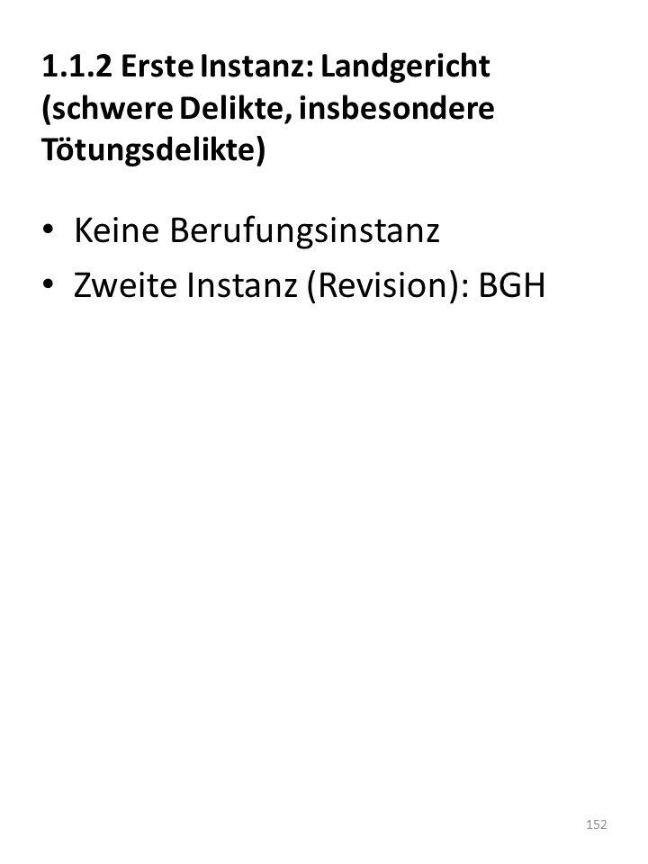 Keine Berufungsinstanz Zweite Instanz (Revision): BGH