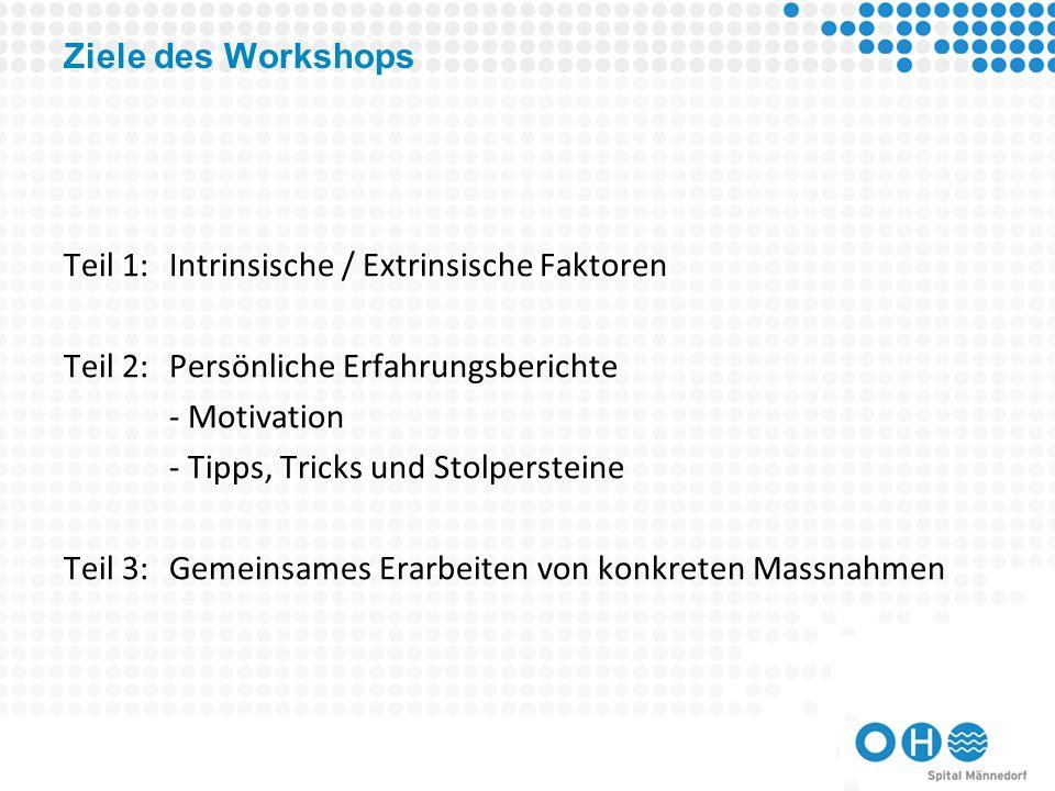 Ziele des Workshops Teil 1: Intrinsische / Extrinsische Faktoren. Teil 2: Persönliche Erfahrungsberichte.