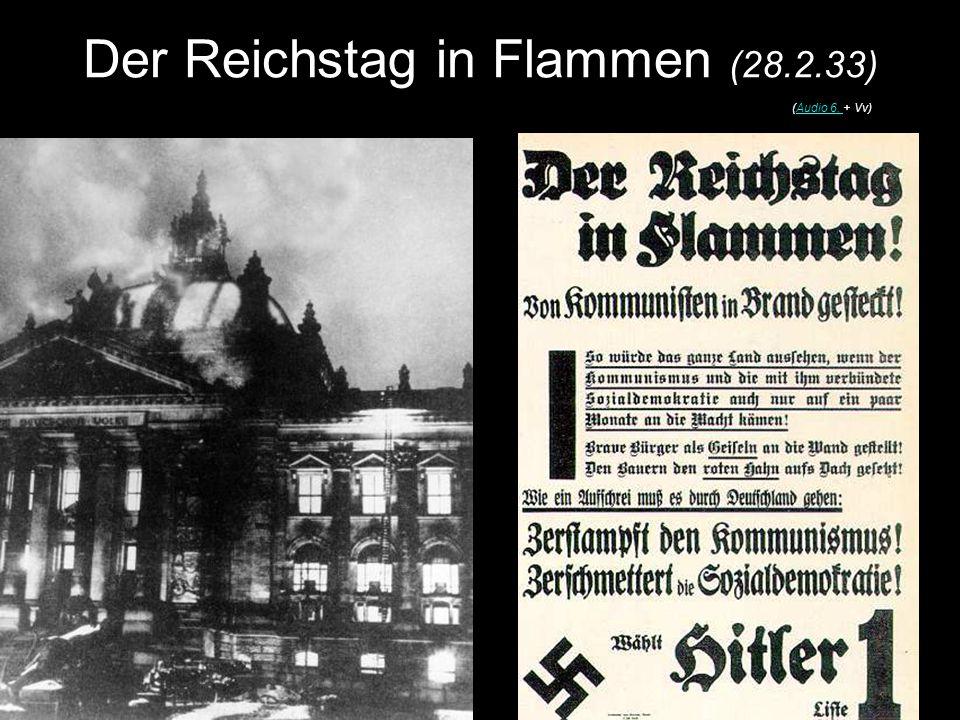Der Reichstag in Flammen (28.2.33)