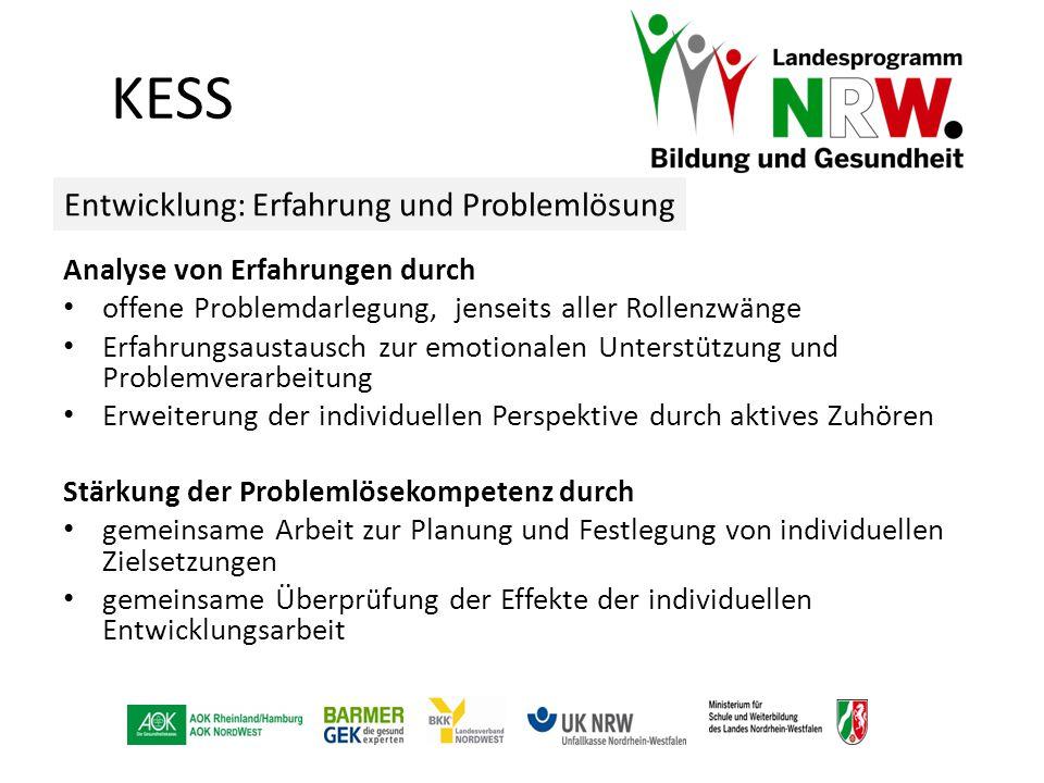 KESS Entwicklung: Erfahrung und Problemlösung