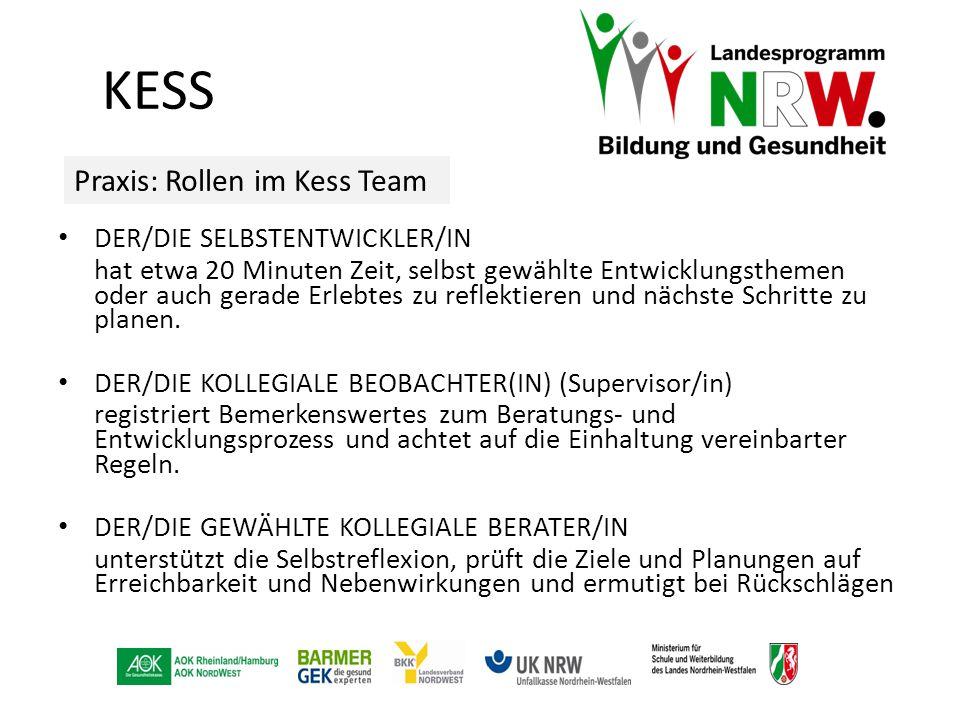 KESS Praxis: Rollen im Kess Team DER/DIE SELBSTENTWICKLER/IN