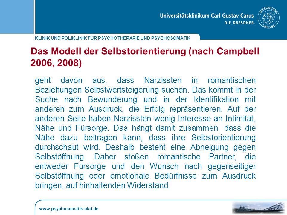 Das Modell der Selbstorientierung (nach Campbell 2006, 2008)