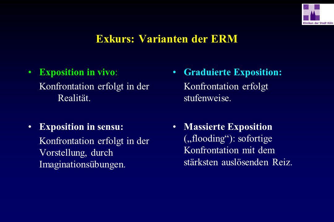 Exkurs: Varianten der ERM
