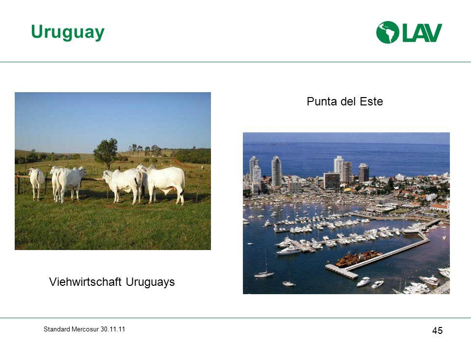 Uruguay Punta del Este Viehwirtschaft Uruguays