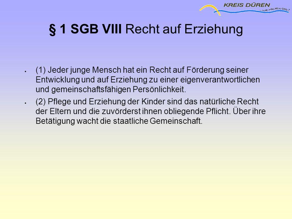 § 1 SGB VIII Recht auf Erziehung