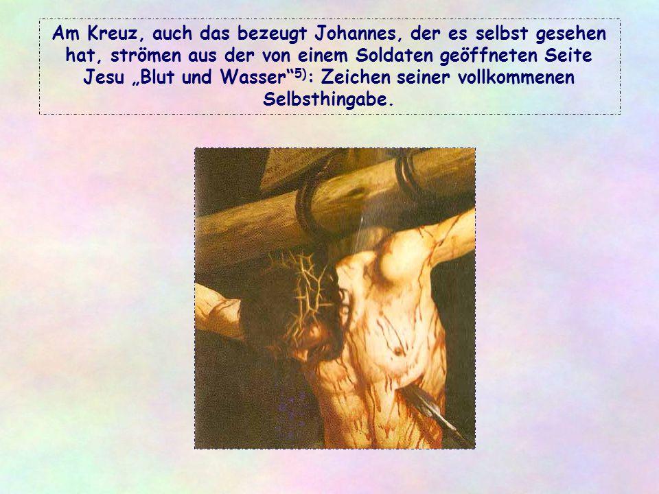 """Am Kreuz, auch das bezeugt Johannes, der es selbst gesehen hat, strömen aus der von einem Soldaten geöffneten Seite Jesu """"Blut und Wasser 5): Zeichen seiner vollkommenen Selbsthingabe."""