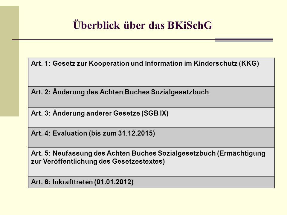 Überblick über das BKiSchG