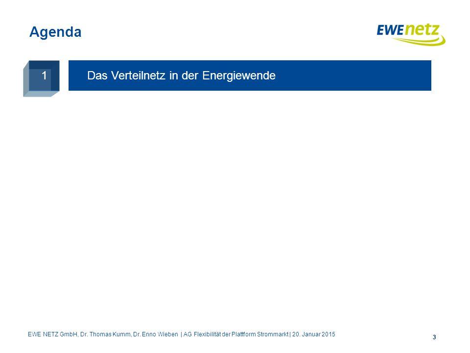 Agenda 1 Das Verteilnetz in der Energiewende