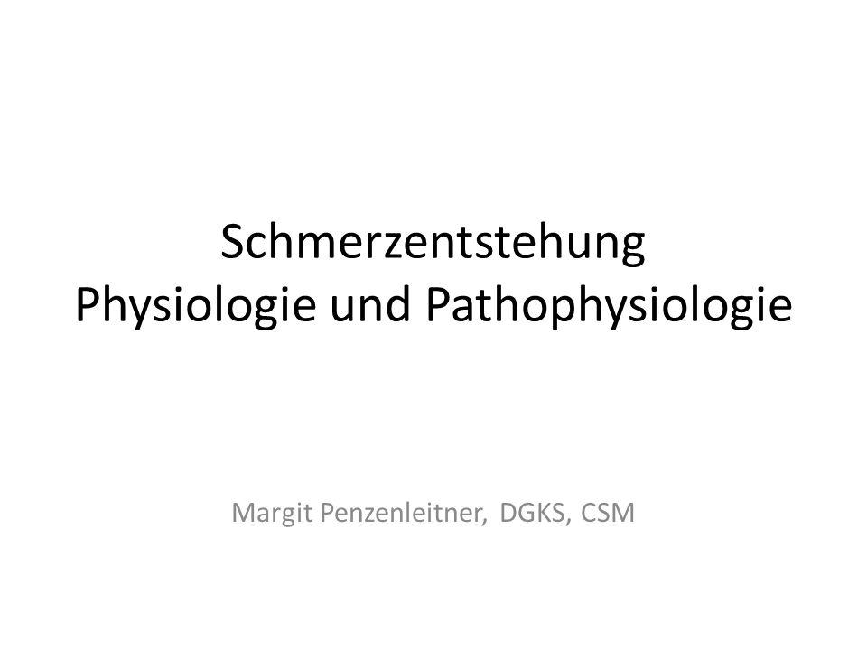 Schmerzentstehung Physiologie und Pathophysiologie