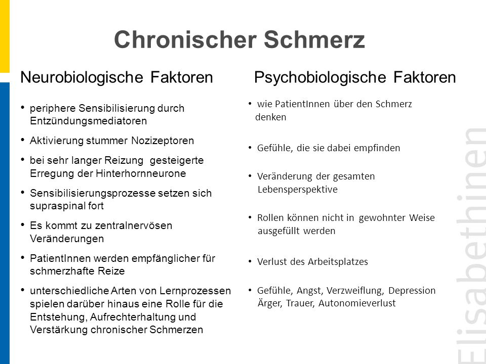 Neurobiologische Faktoren Psychobiologische Faktoren