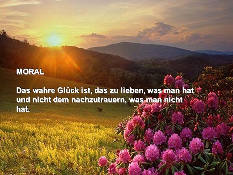 MORAL Das wahre Glück ist, das zu lieben, was man hat und nicht dem nachzutrauern, was man nicht hat.