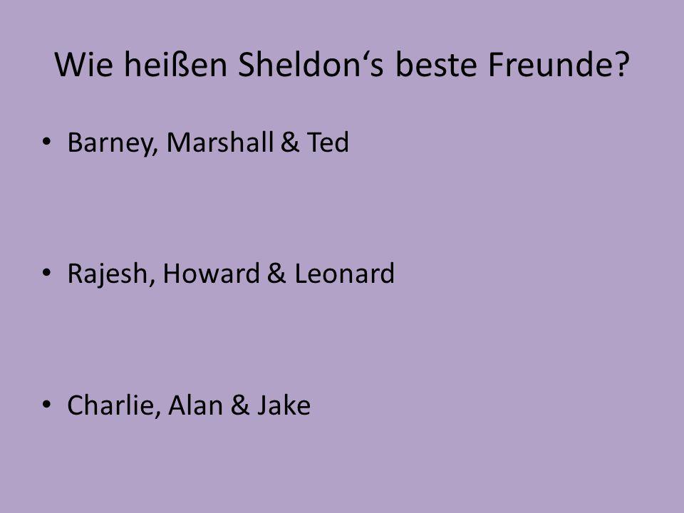 Wie heißen Sheldon's beste Freunde