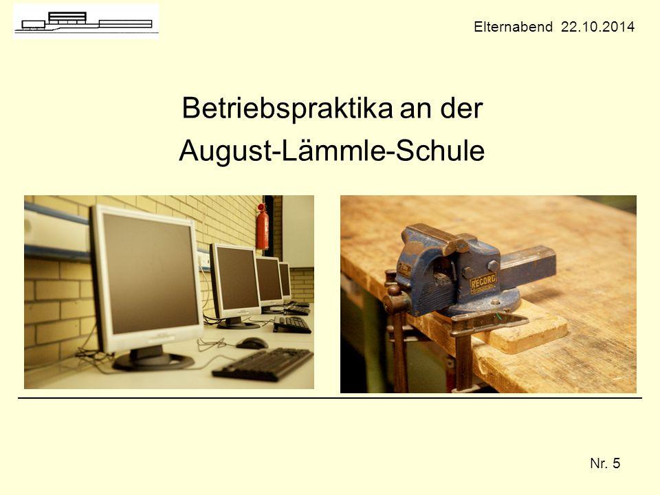 Betriebspraktika an der August-Lämmle-Schule