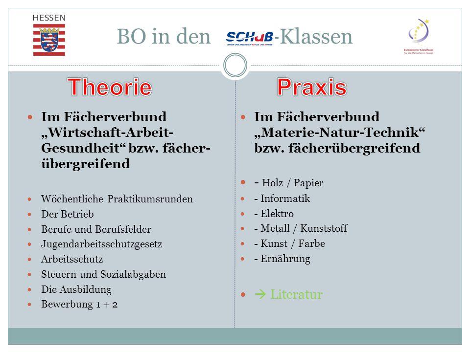 Theorie Praxis BO in den - -Klassen