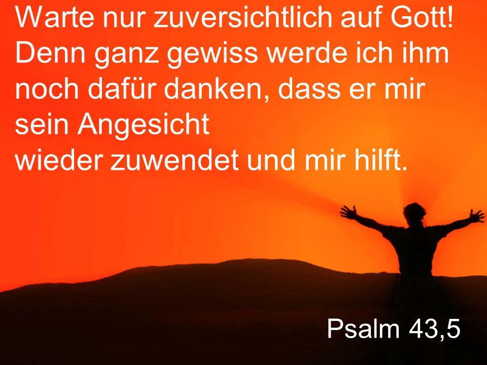 Warte nur zuversichtlich auf Gott