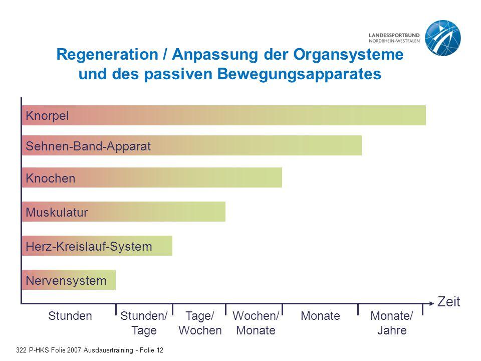 Regeneration / Anpassung der Organsysteme und des passiven Bewegungsapparates