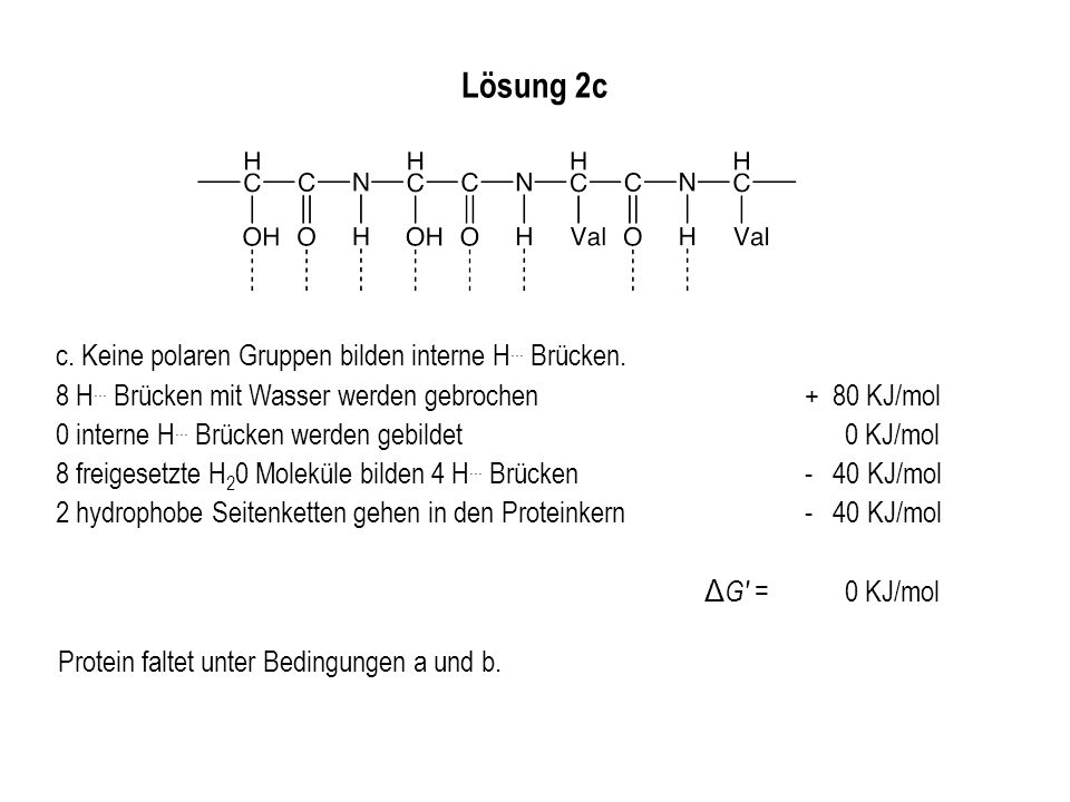 Lösung 2c c. Keine polaren Gruppen bilden interne H... Brücken.
