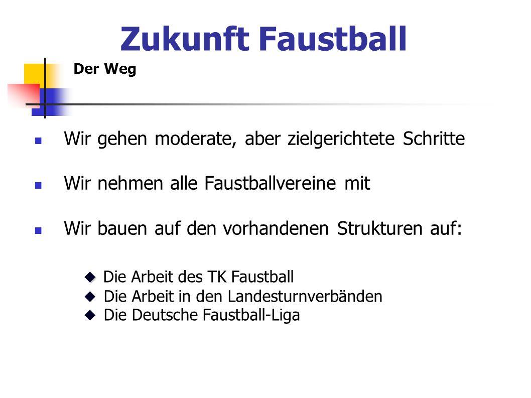 Zukunft Faustball Wir gehen moderate, aber zielgerichtete Schritte