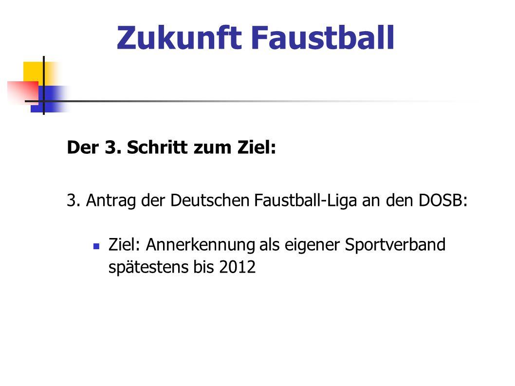 Zukunft Faustball Der 3. Schritt zum Ziel: