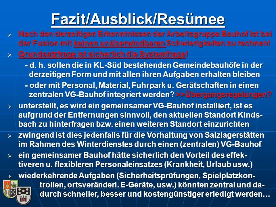 Fazit/Ausblick/Resümee