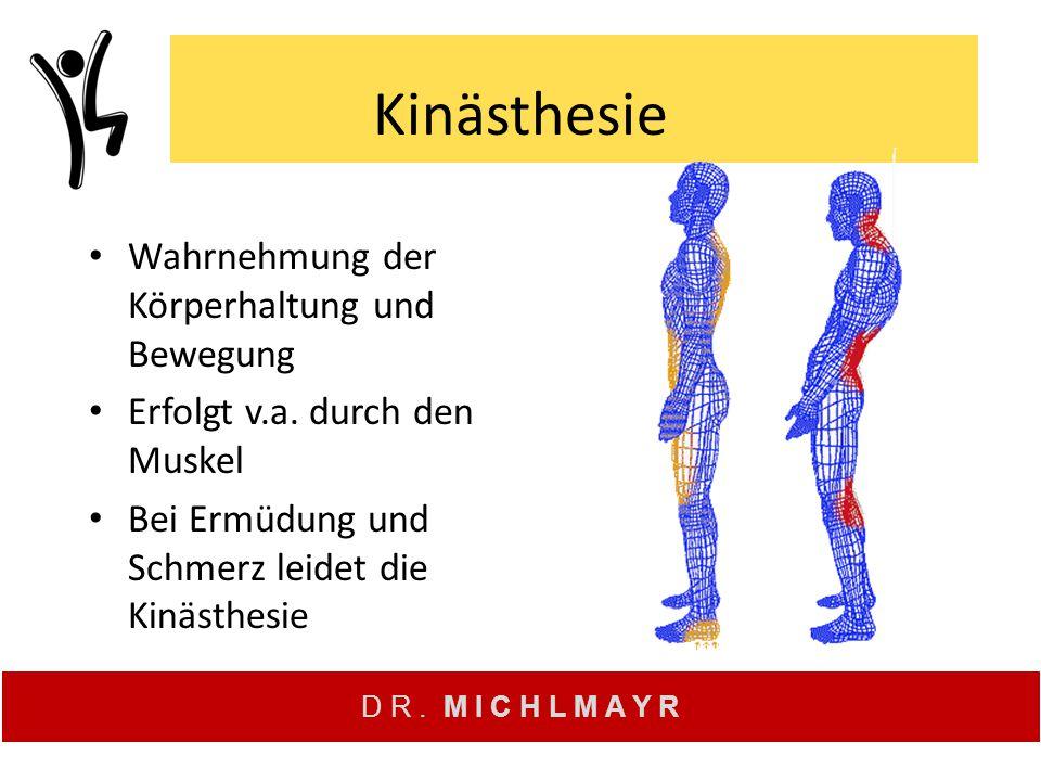 Kinästhesie Wahrnehmung der Körperhaltung und Bewegung
