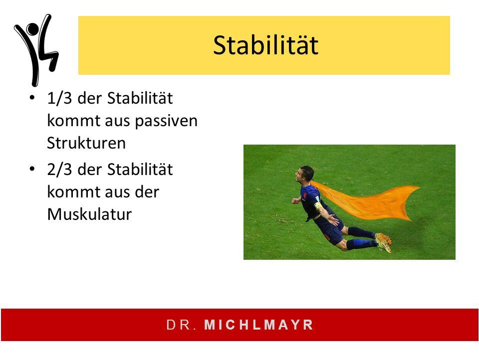 Stabilität 1/3 der Stabilität kommt aus passiven Strukturen