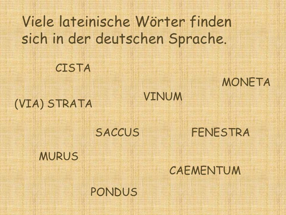 Viele lateinische Wörter finden sich in der deutschen Sprache.
