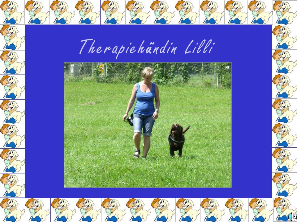 Therapiehündin Lilli