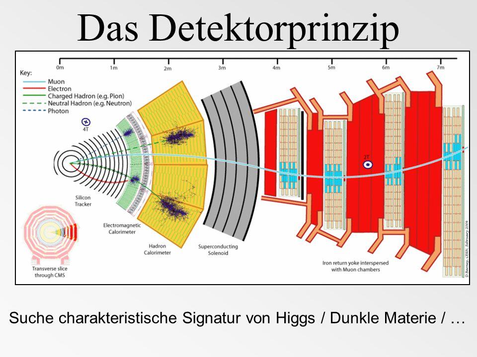 Das Detektorprinzip Suche charakteristische Signatur von Higgs / Dunkle Materie / …