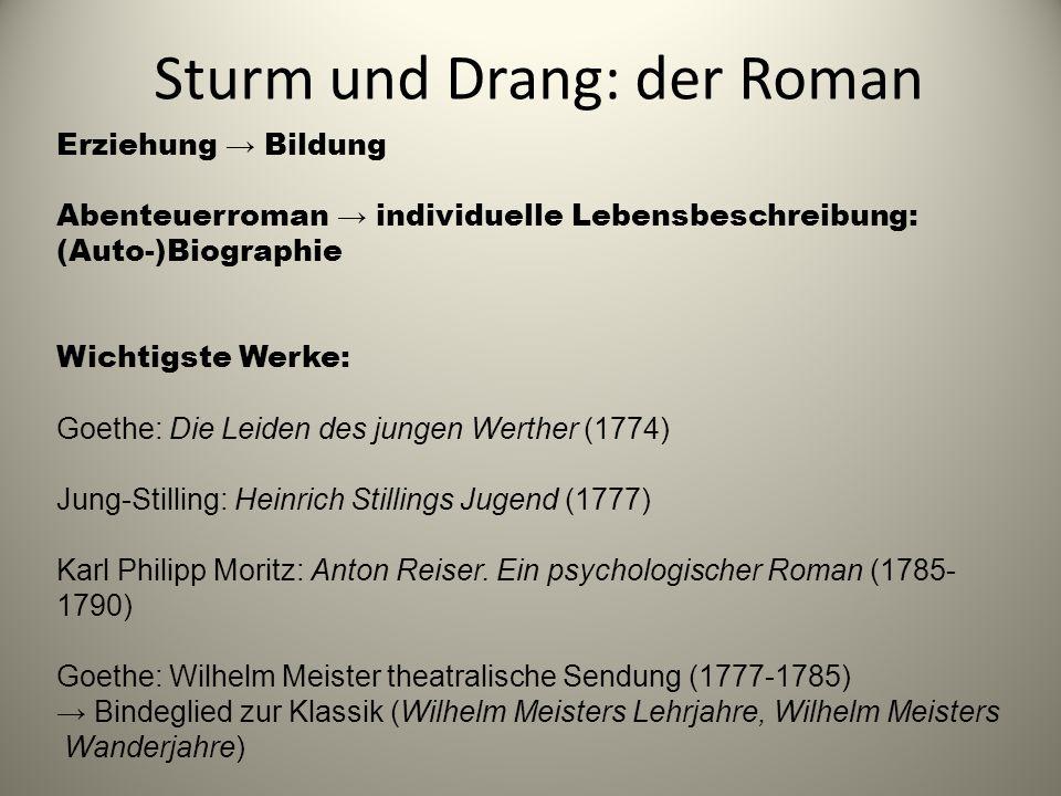 Sturm und Drang: der Roman