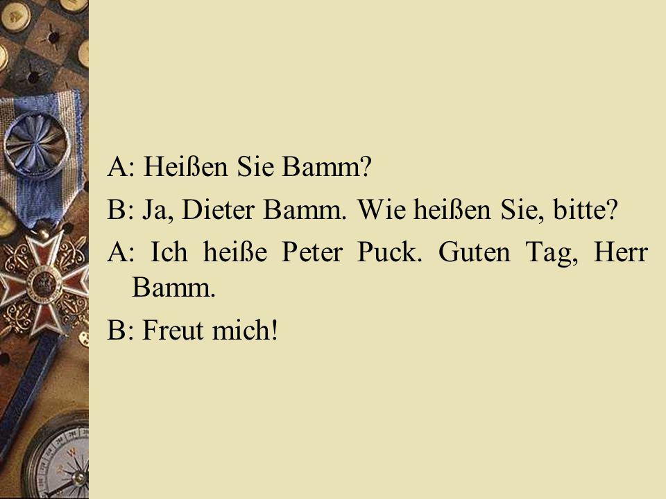 A: Heißen Sie Bamm B: Ja, Dieter Bamm. Wie heißen Sie, bitte A: Ich heiße Peter Puck. Guten Tag, Herr Bamm.