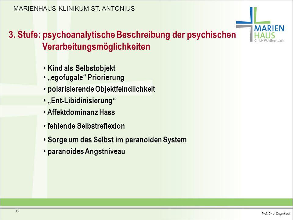 3. Stufe: psychoanalytische Beschreibung der psychischen Verarbeitungsmöglichkeiten