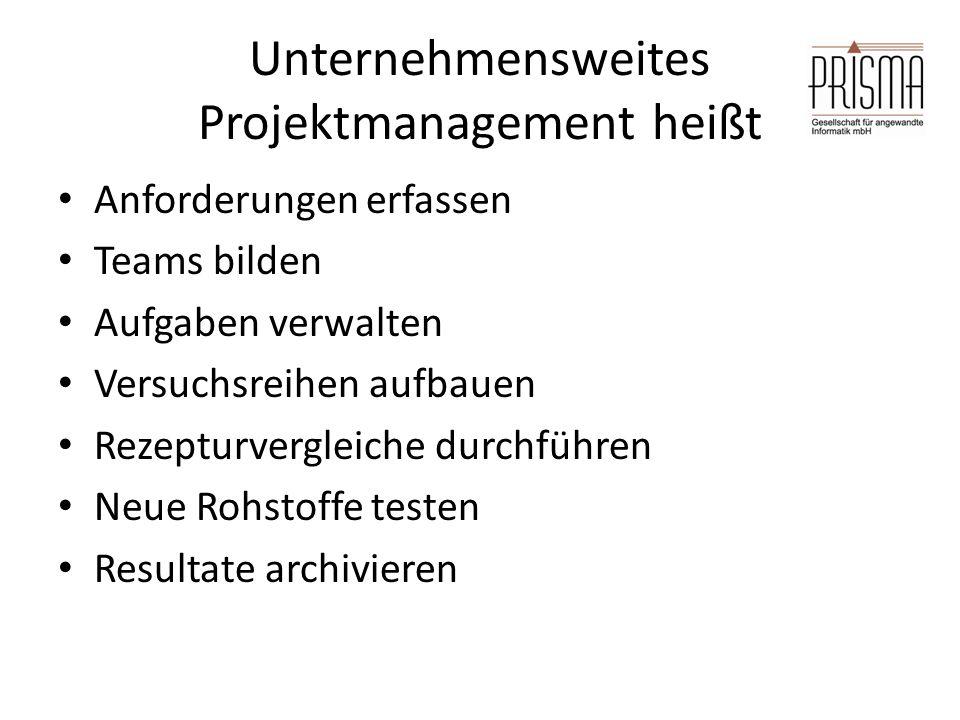 Unternehmensweites Projektmanagement heißt