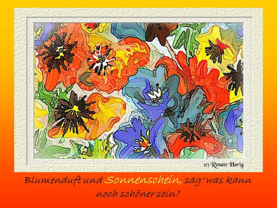 Blumenduft und Sonnenschein, sag' was kann noch schöner sein