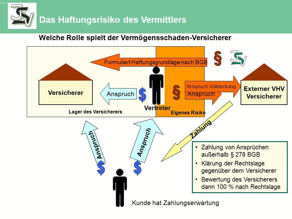 Welche Rolle spielt der Vermögensschaden-Versicherer