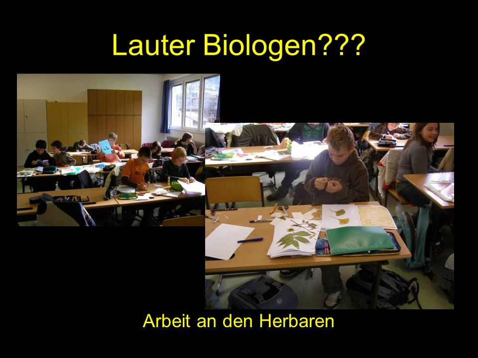 Lauter Biologen Arbeit an den Herbaren