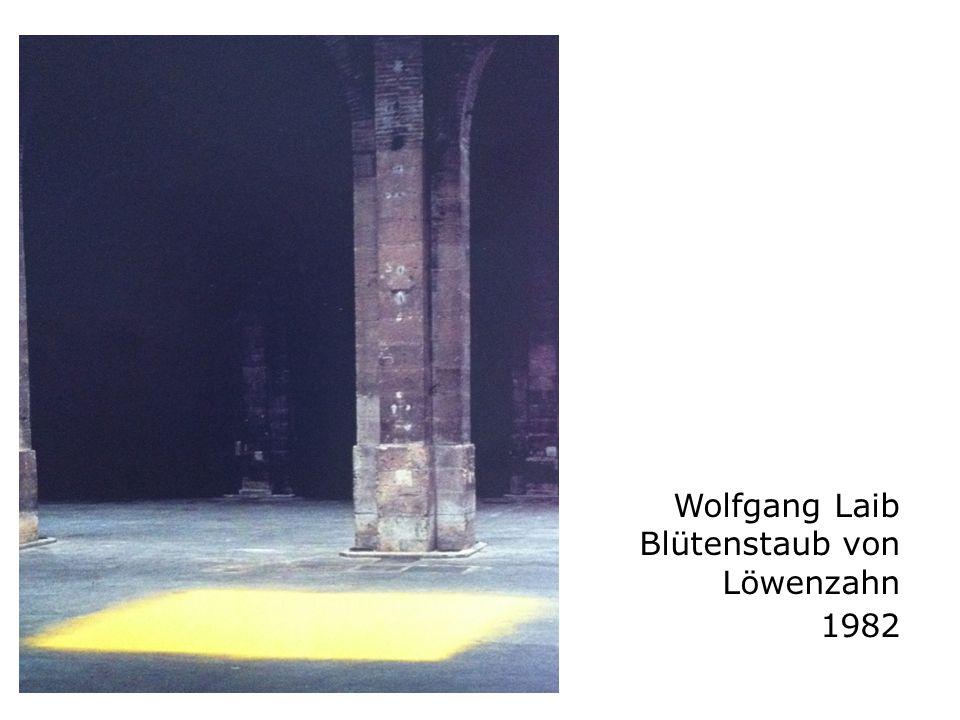 Wolfgang Laib Blütenstaub von Löwenzahn