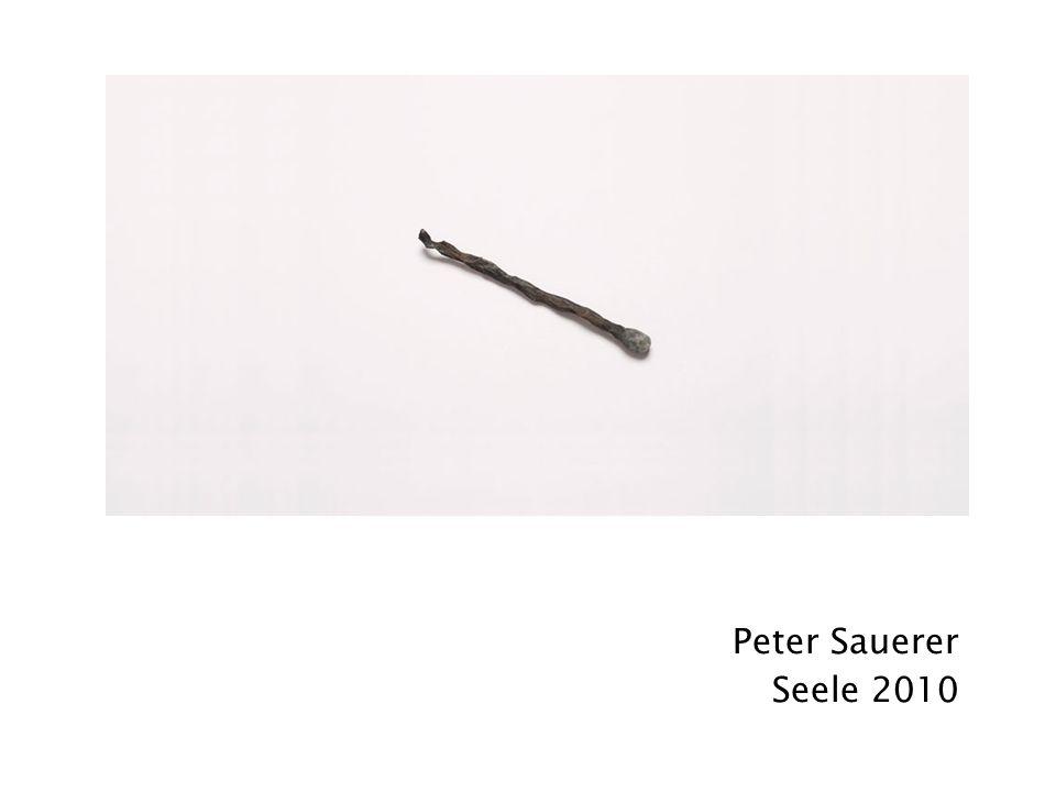 Peter Sauerer Seele 2010