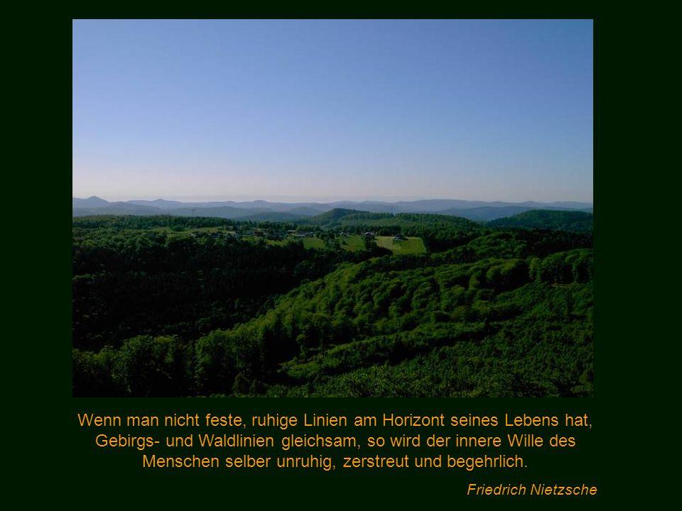 Wenn man nicht feste, ruhige Linien am Horizont seines Lebens hat, Gebirgs- und Waldlinien gleichsam, so wird der innere Wille des Menschen selber unruhig, zerstreut und begehrlich.