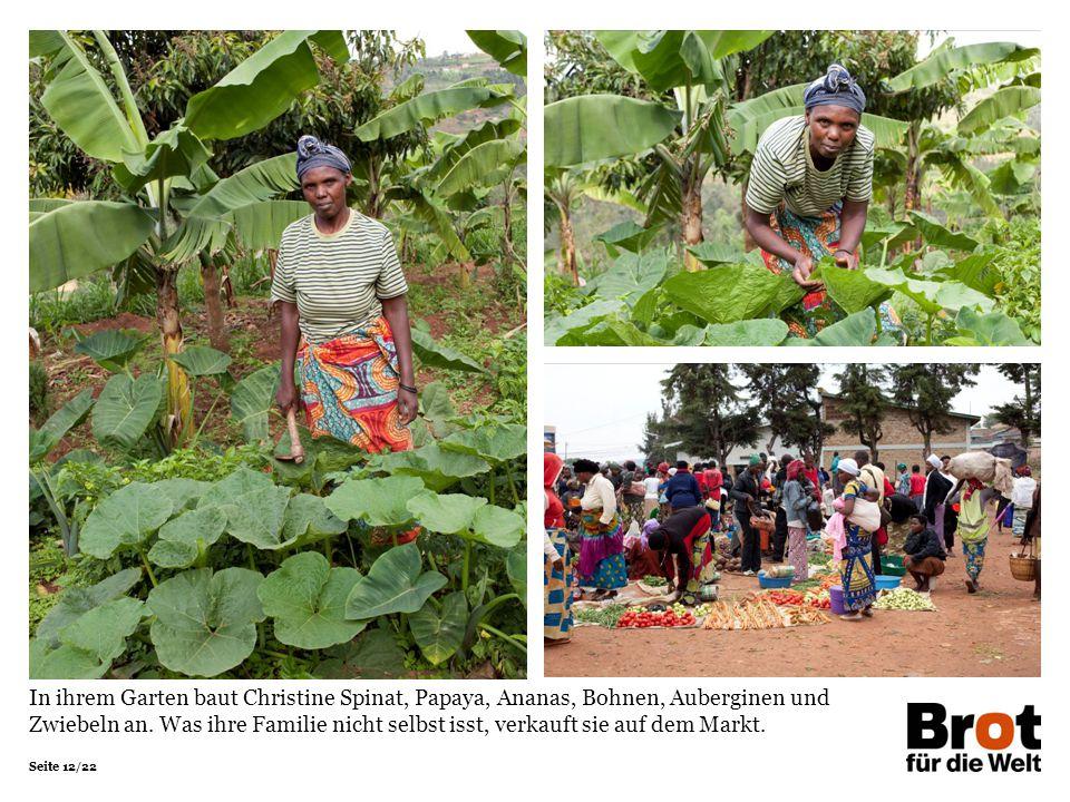 In ihrem Garten baut Christine Spinat, Papaya, Ananas, Bohnen, Auberginen und Zwiebeln an.