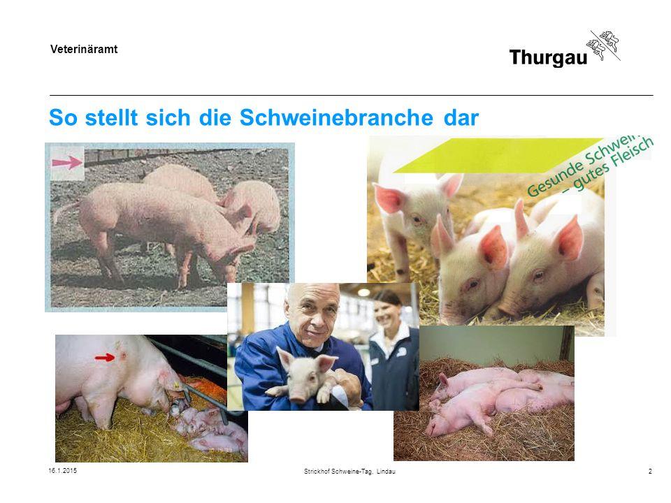 So stellt sich die Schweinebranche dar