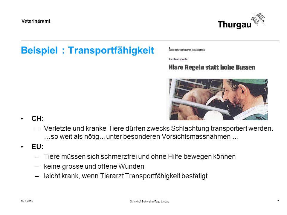 Beispiel : Transportfähigkeit