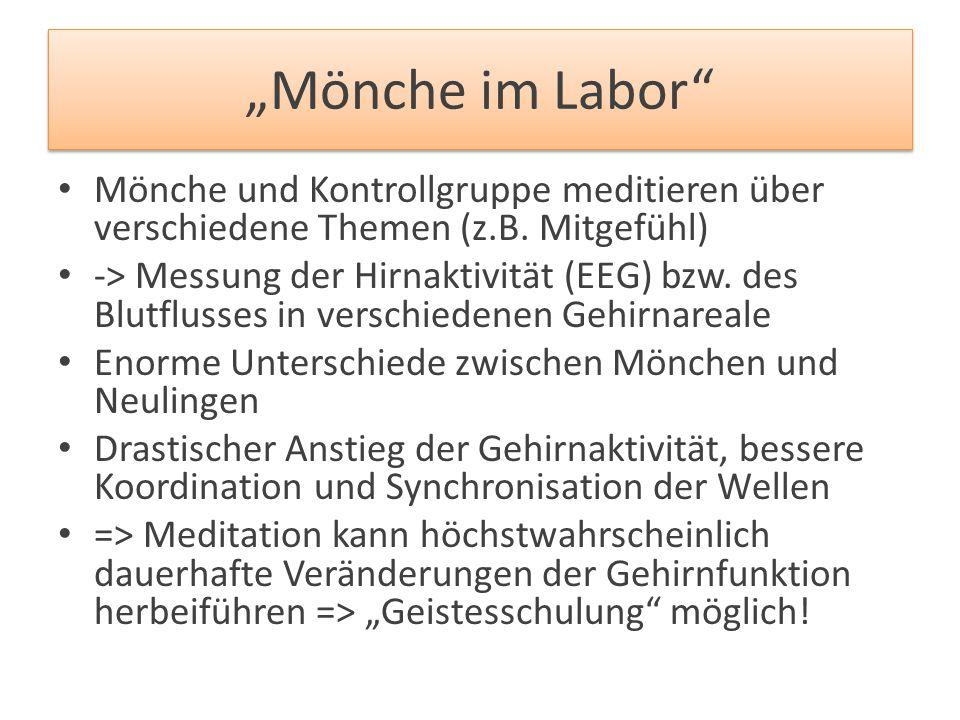 """""""Mönche im Labor Mönche und Kontrollgruppe meditieren über verschiedene Themen (z.B. Mitgefühl)"""