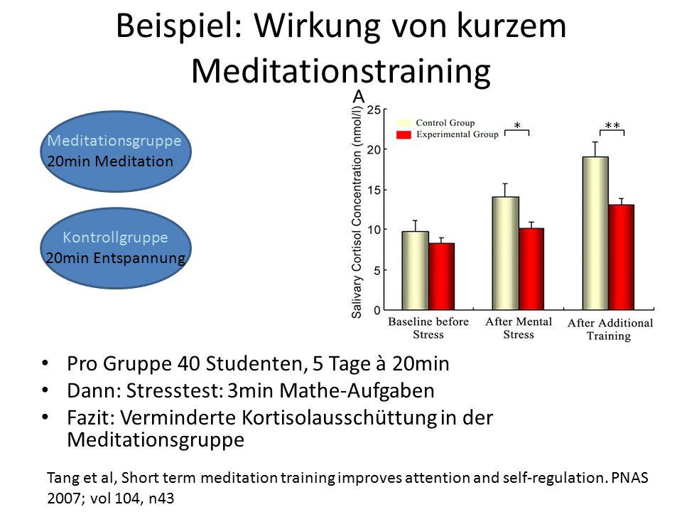 Beispiel: Wirkung von kurzem Meditationstraining