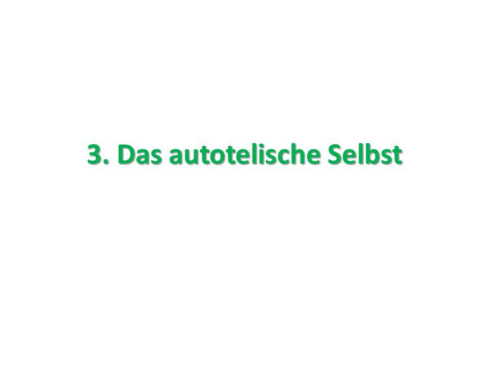 3. Das autotelische Selbst