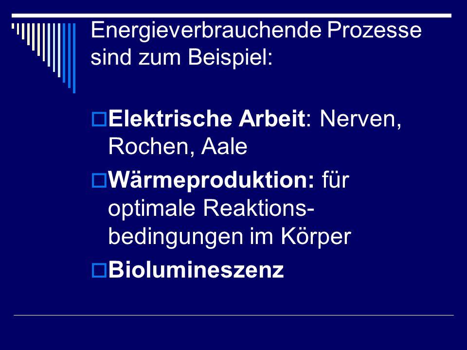 Energieverbrauchende Prozesse sind zum Beispiel: