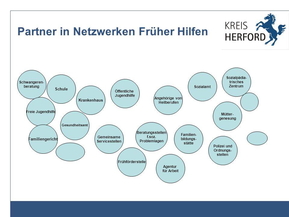 Partner in Netzwerken Früher Hilfen