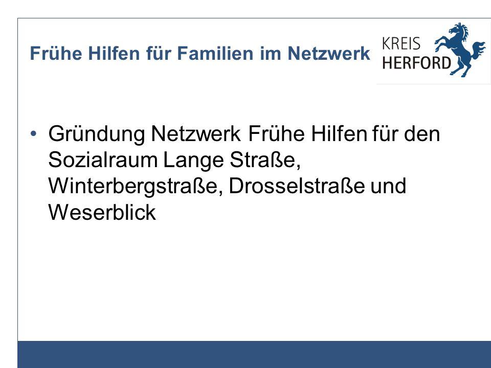 Frühe Hilfen für Familien im Netzwerk