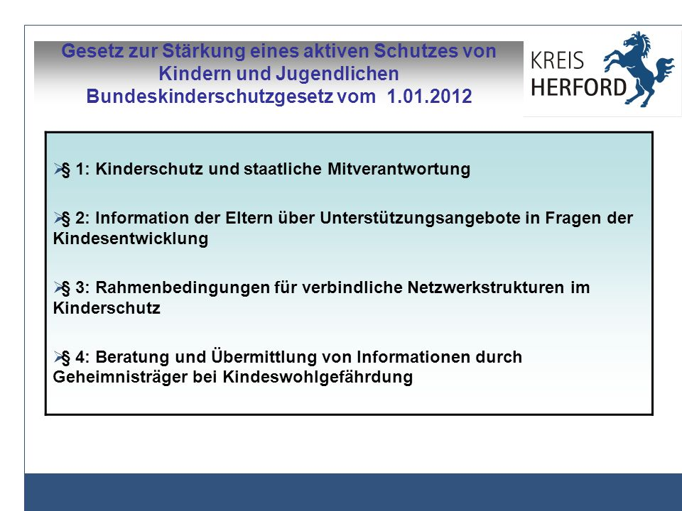 Gesetz zur Stärkung eines aktiven Schutzes von Kindern und Jugendlichen Bundeskinderschutzgesetz vom 1.01.2012